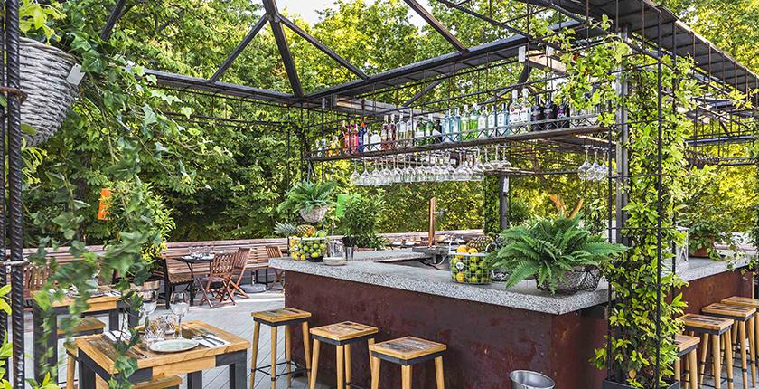 Rooftop de Madrid terraza con vegatación